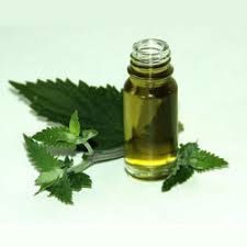 CATNIP OIL - Rakesh Sandal Industries