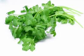 CORIANDER SEED OIL(INDIAN) - Rakesh Sandal Industries