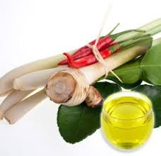 GALANGAL OIL - Rakesh Sandal Industries